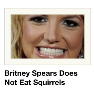 funny meme with a fact about Britney Spears