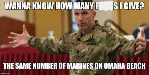 Soldier - WANNA KNOW HOW MANY F SIGIVE? ARA THE SAME NUMBER OF MARINES ON OMAHA BEACH .com