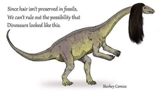 funny meme about dinosaurs having hair