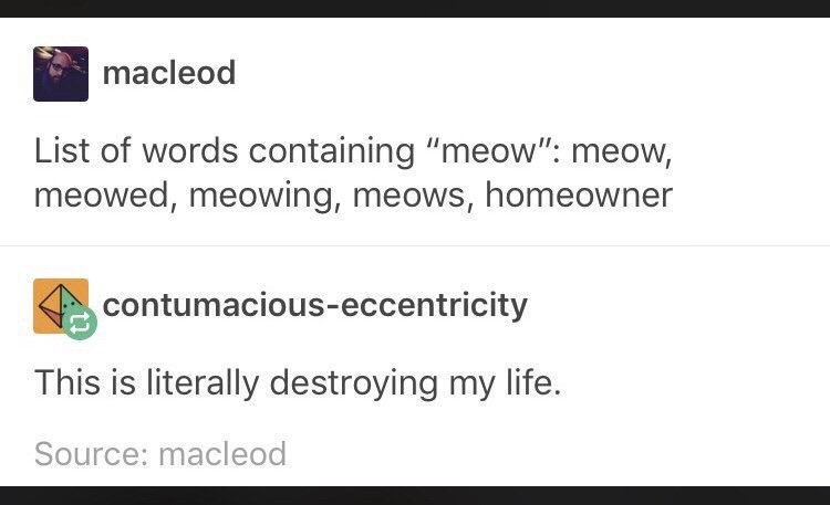 "funny meme about words that contain the word ""meow"""