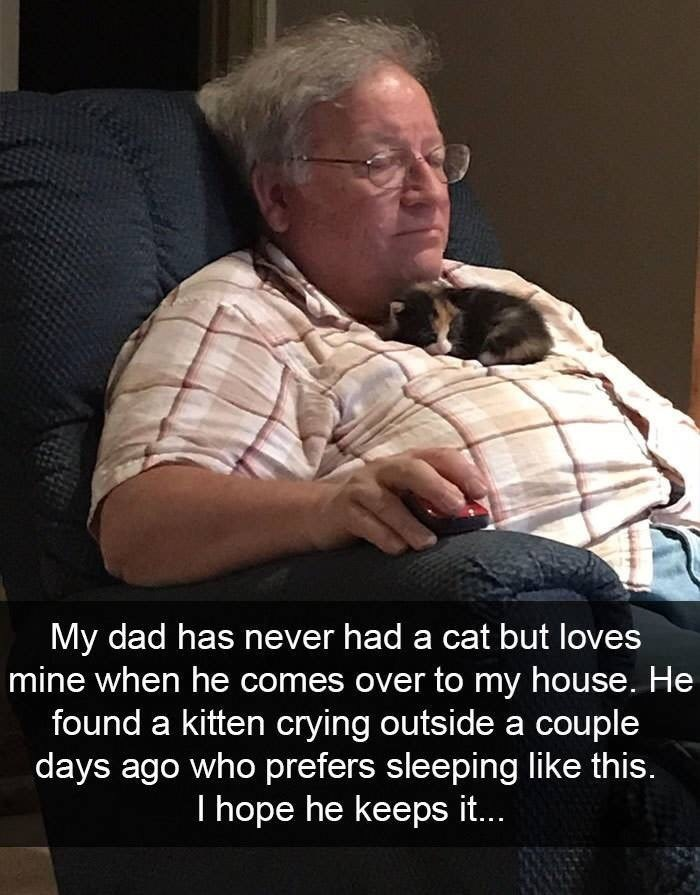 snpachat - Photo caption - My dad has never had a cat but loves mine when he comes over to my house. He found a kitten crying outside a couple days ago who prefers sleeping like this. I hope he keeps it...