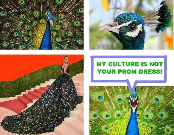 Peafowl - MY CULTURE IS NOT YOUR PROM DRESS!