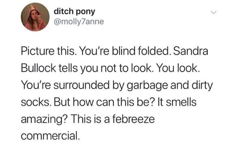 meme - Text - ditch pony @molly7anne Picture this. You're blind folded. Sandra Bullock tells you not to look. You look. You're surrounded by garbage and dirty socks. But how can this be? It smells amazing? This is a febreeze commercial.