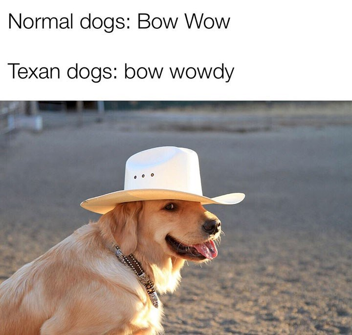 Dog - Normal dogs: Bow Wow Texan dogs: bow wowdy ******