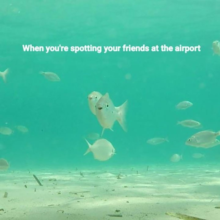 Text - When you're spotting your friends at the airport
