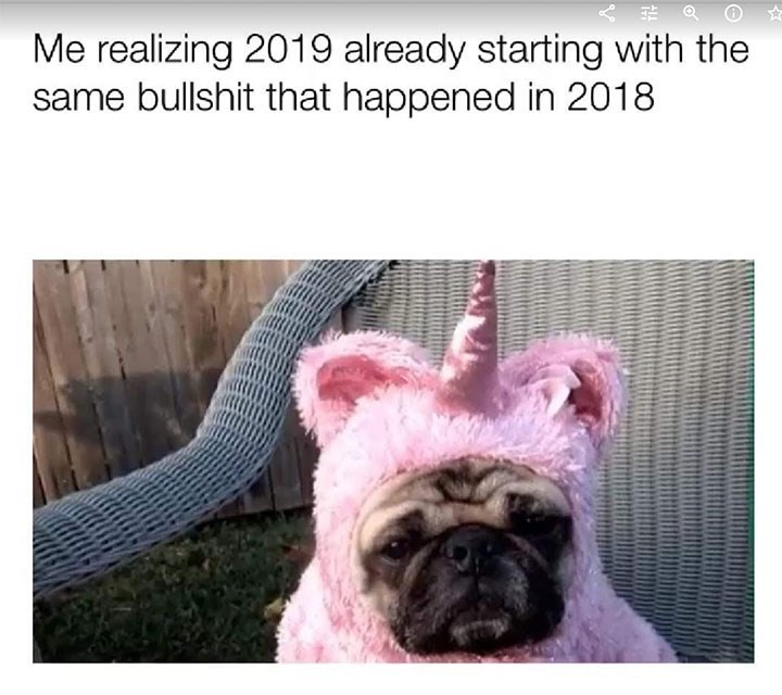Dog - Me realizing 2019 already starting with the same bullshit that happened in 2018