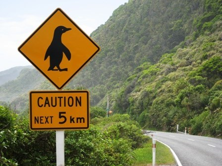 road sign cautioning from penguins in the next few kilometers