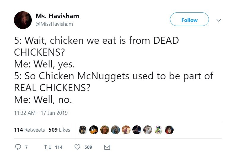 Text - Ms. Havisham Follow @MissHavisham 5: Wait, chicken we eat is from DEAD CHICKENS? Me: Well, yes. 5: So Chicken McNuggets used to be part of REAL CHICKENS? Me: Well, no. 11:32 AM 17 Jan 2019 114 Retweets 509 Likes 7 t114 509