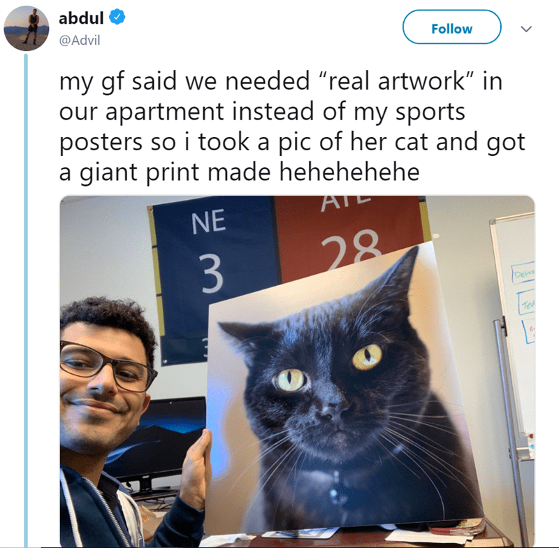 "Cat - abdul @Advil Follow my gf said we needed ""real artwork"" in our apartment instead of my sports posters so i took a pic of her cat and got a giant print made hehehehehe AT NE 28 3 Delve Ted"