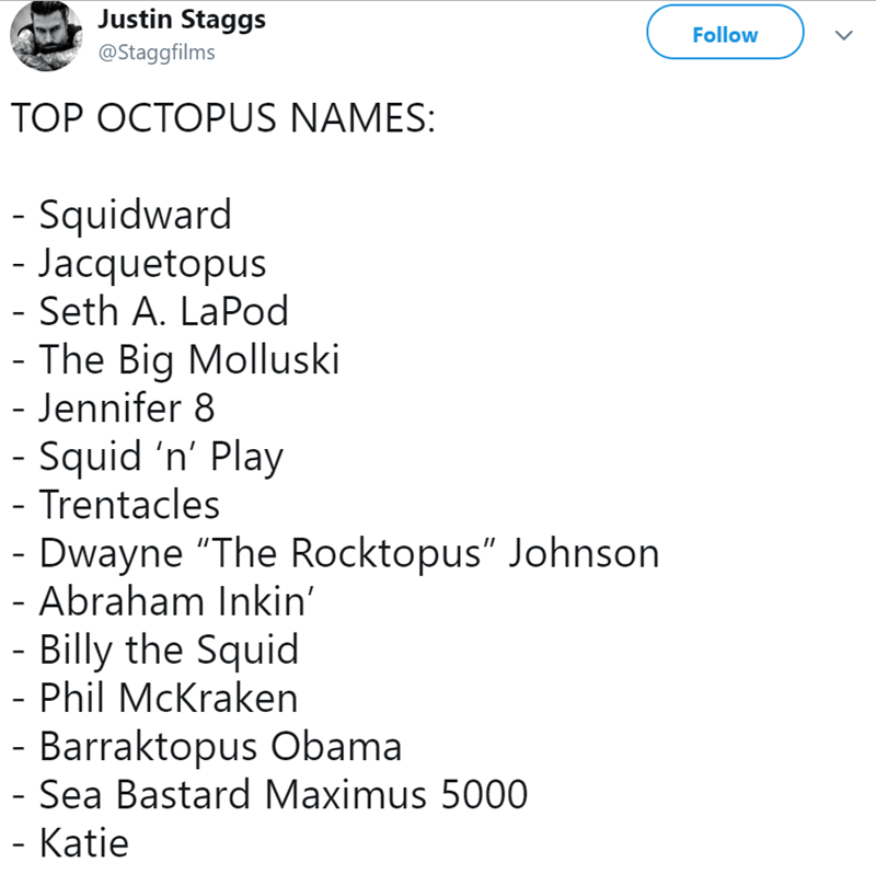 "Text - Justin Staggs Follow @Staggfilms TOP OCTOPUS NAMES: - Squidward - Jacquetopus - Seth A. LaPod - The Big Molluski - Jennifer 8 - Squid 'n' Play - Trentacles - Dwayne ""The Rocktopus"" Johnson - Abraham Inkin' - Billy the Squid - Phil McKraken - Barraktopus Obama - Sea Bastard Maximus 5000 - Katie"