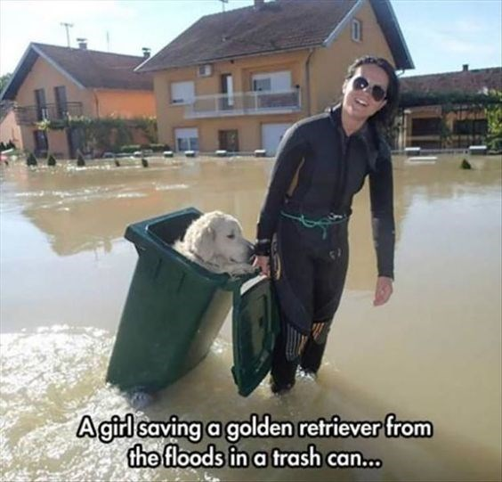 pic of a woman in a diving suit dragging a trash can with a dog in it during a flood