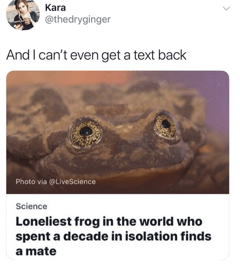 "Headline that reads, ""Loneliest frog in the world who spent a decade in isolation finds a mate;"" someone comments, ""And I can't even get a text back"""