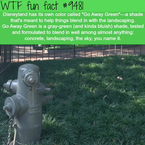 """Grass - WTF fun fact #1481 Disneyland has its own color called """"Go Away Green"""" a shade that's meant to help things blend in with the landscaping Go Away Green is a gray-green (and kinda bluish) shade, tested and formulated to blend in well among almost anything: concrete, landscaping, the sky, you name it."""