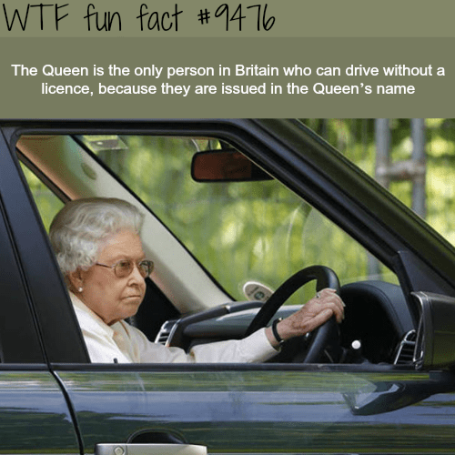Vehicle door - WTF fun fact #14 The Queen is the only person in Britain who can drive without a licence, because they are issued in the Queen's name