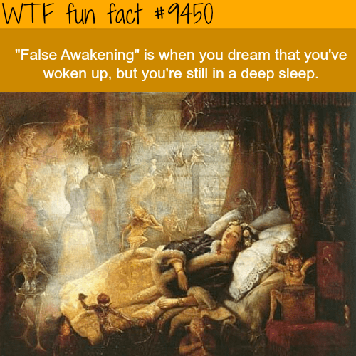 """Text - WTF fun fact #1450 """"False Awakening"""" is when you dream that you've woken up, but you're still in a deep sleep."""
