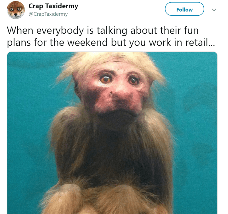Hair - Crap Taxidermy @Crap Taxidermy Follow When everybody is talking about their fun plans for the weekend but you work in retail...