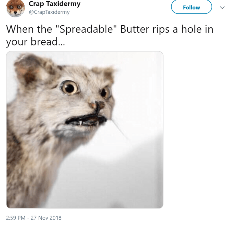 """Text - Crap Taxidermy @CrapTaxidermy Follow When the """"Spreadable"""" Butter rips a hole in your brea... 2:59 PM 27 Nov 2018"""