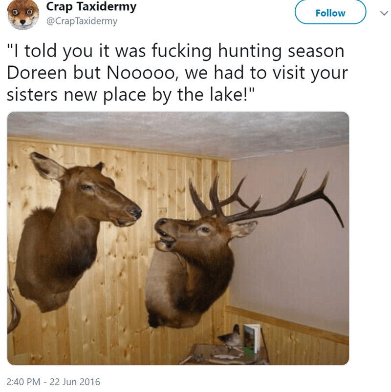 """Elk - Crap Taxidermy @CrapTaxidermy Follow """"I told you it was fucking hunting season Doreen but Nooooo, we had to visit your sisters new place by the lake!"""" 2:40 PM - 22 Jun 2016"""
