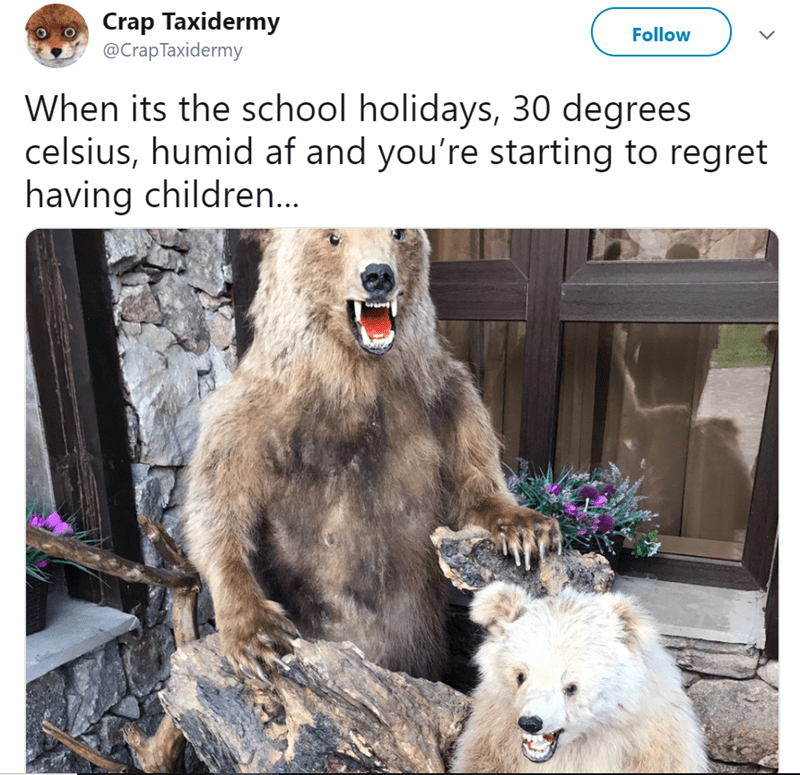 Wildlife - Crap Taxidermy @CrapTaxidermy Follow When its the school holidays, 30 degrees celsius, humid af and you're starting to regret having childre...