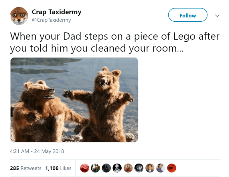 Brown bear - Crap Taxidermy @CrapTaxidermy Follow When your Dad steps on a piece of Lego after you told him you cleaned your room... 4:21 AM-24 May 2018 285 Retweets 1,108 Likes