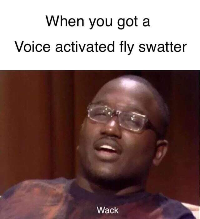 meme - Face - When you got a Voice activated fly swatter Wack