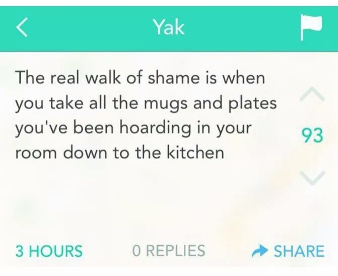 meme - Text - Yak The real walk of shame is when you take all the mugs and plates you've been hoarding in your 93 room down to the kitchen 3 HOURS O REPLIES SHARE L