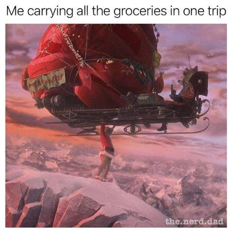 Organism - Me carrying all the groceries in one trip the.nerd.dad