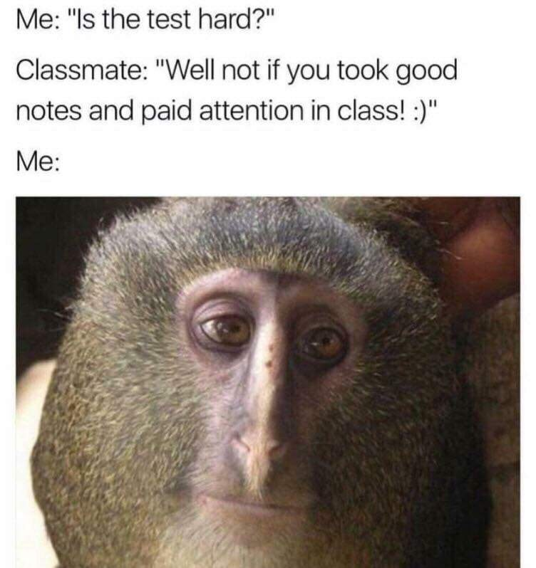 """Caption that reads, """"Me: Is the test hard? Classmate: Well not if you took good notes and paid attention in class! Me: ..."""" above a pic of a moderately sad-looking monkey"""