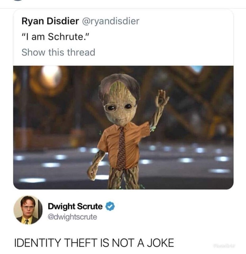 "Cartoon - Ryan Disdier @ryandisdier ""I am Schrute."" Show this thread Dwight Scrute @dwightscrute IDENTITY THEFT IS NOT A JOKE"