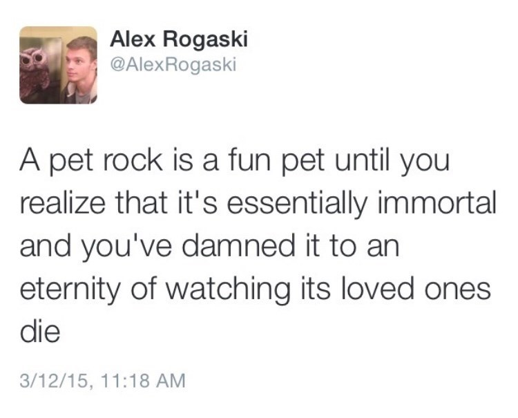 "Tweet that reads, ""A pet rock is a fun pet until you realize that it's essentially immortal and you've damned it to an eternity of watching its loved ones die"""