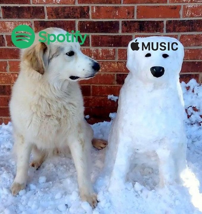 """Pic of a dog that represents """"Spotify"""" looking at a dog made out of snow, that represents """"Apple Music"""""""