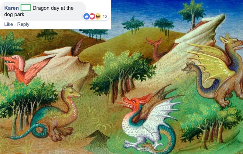 Dragon - Dragon day at the Karen dog park 12 Like Reply