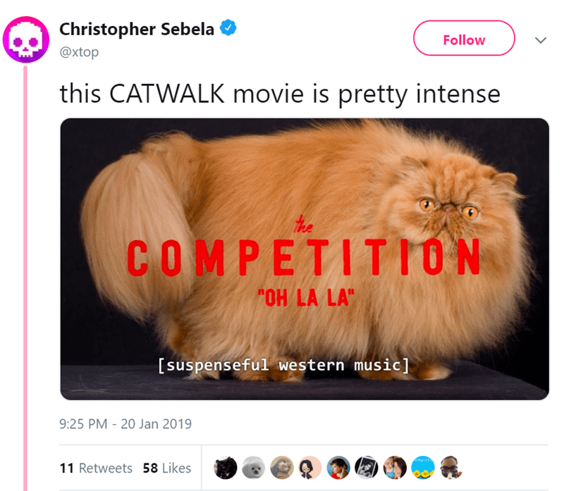 "Hair - Christopher Sebela Follow @xtop this CATWALK movie is pretty intense COMPETIT 1ON OH LA LA"" [suspenseful western music] 9:25 PM 20 Jan 2019 kgirl 11 Retweets 58 Likes"