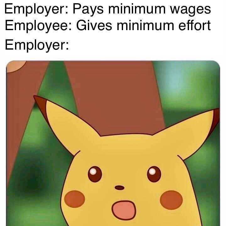 Snout - Employer: Pays minimum wages Employee: Gives minimum effort Employer: