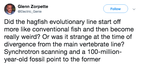 Text - Glenn Zorpette Follow @Electric_Genie Did the hagfish evolutionary line start off more like conventional fish and then become really weird? Or was it strange at the time of divergence from the main vertebrate line? Synchrotron scanning and a 100-million- year-old fossil point to the former