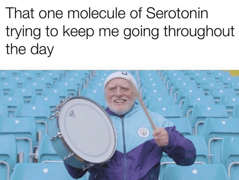 """Caption that reads, """"That one molecule of serotonin trying to keep me going throughout the day"""" above a pic of Hide-the-Pain Harold holding up a drum and a drum stick"""