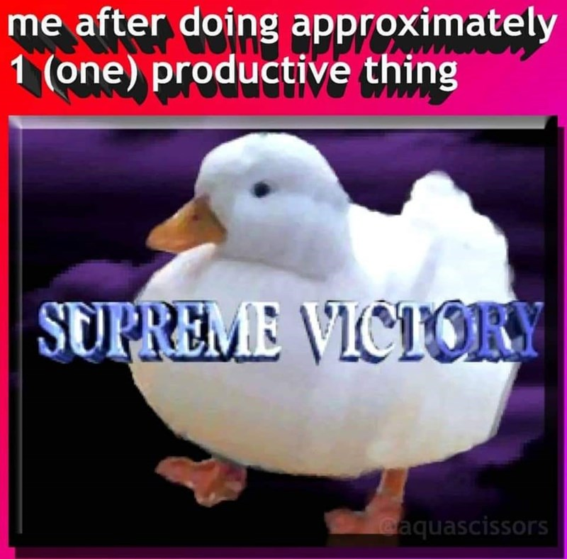 meme - Bird - me after doing approximately 1 (one) productive thing SUPREME VICTORY eaquascissors