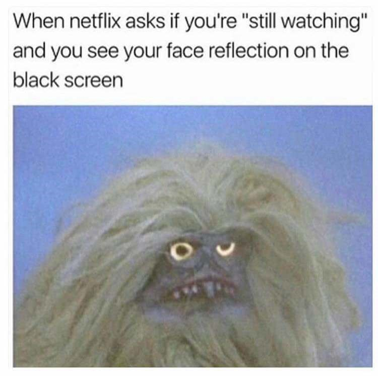 """Snout - When netflix asks if you're """"still watching"""" and you see your face reflection on the black screen"""
