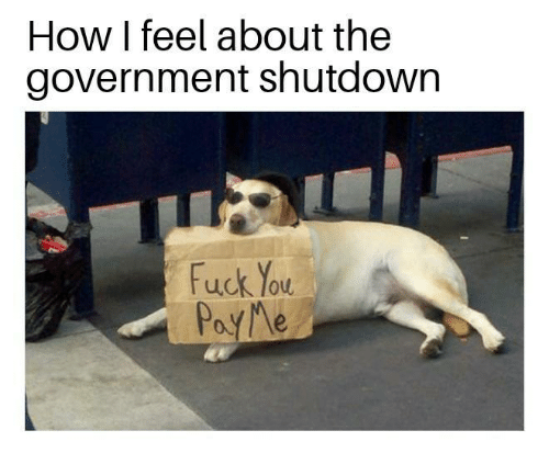 Canidae - How I feel about the government shutdown मा Fuck You PoyMe