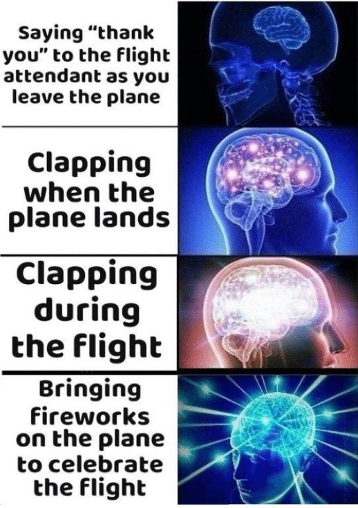 """Organism - Saying """"thank you"""" to the flight attendant as you leave the plane Clapping when the plane lands Clapping during the flight Bringing fireworks on the plane to celebrate the flight"""