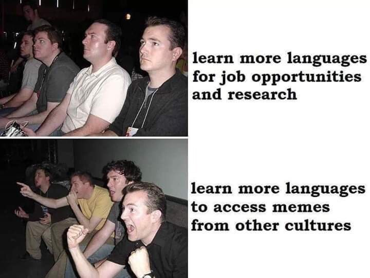 Photo caption - learn more languages for job opportunities and research learn more languages to access memes from other cultures