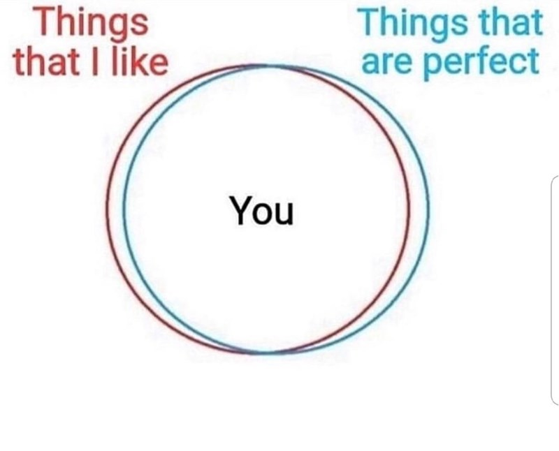 Text - Things that are perfect Things that I like You