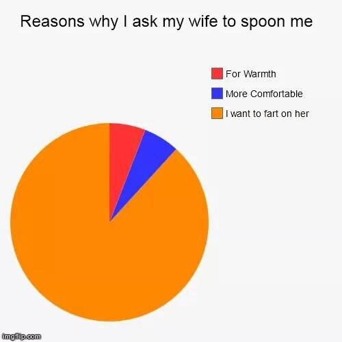 Text - Reasons why I ask my wife to spoon me |For Warmth |More Comfortable I want to fart on her imgilip.com