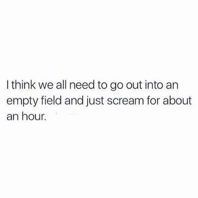 """Text that reads, """"I think we all need to go out into an empty field and just scream for about an hour"""""""