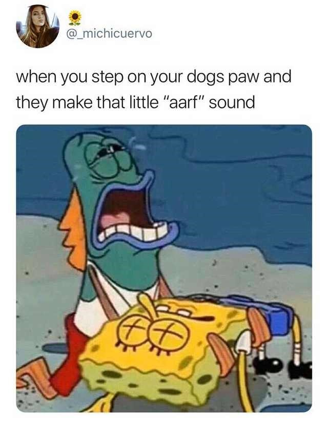 """Caption that reads, """"When you step on your dog's paw and they make that little 'arf' sound"""""""