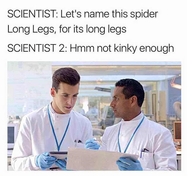 Medical assistant - SCIENTIST: Let's name this spider Long Legs, for its long legs SCIENTIST 2: Hmm not kinky enough