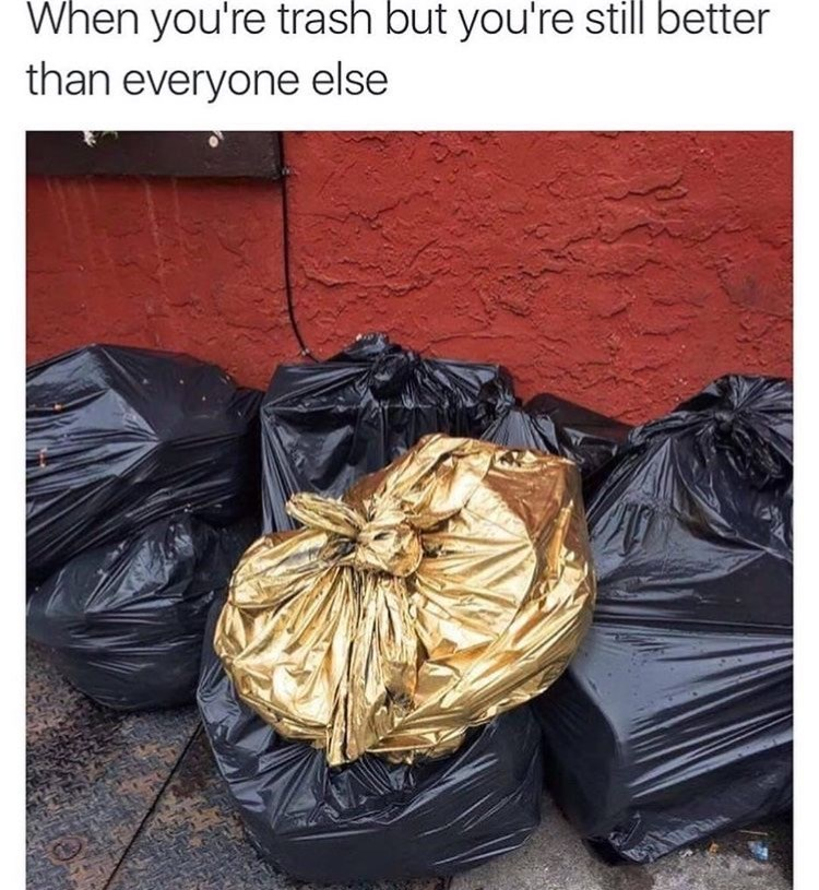 """Caption that reads, """"When you're trash but you're still better than everyone else"""" above a pic of a gold trash bag on top of black trash bags"""