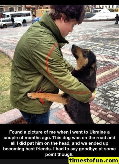 wholesome meme - Street dog - Found a picture of me when i went to Ukraine a couple of months ago. This dog was on the road and all I did pat him on the head, and we ended up becoming best friends. I had to say goodbye at some point though timestofun.com