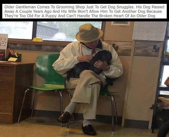 wholesome meme - Photo caption - Older Gentleman Comes To Grooming Shop Just To Get Dog Snuggles. His Dog Passed Away A Couple Years Ago And His Wife Won't Allow Him To Get Another Dog Because They're Too Old For A Puppy And Can't Handle The Broken Heart Of An Older Dog