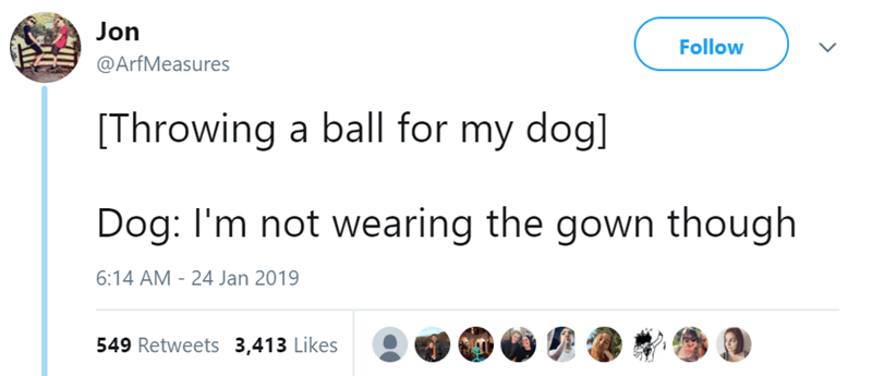 Text - Jon Follow @ArfMeasures Throwing a ball for my dog] Dog: I'm not wearing the gown though 6:14 AM - 24 Jan 2019 549 Retweets 3,413 Likes